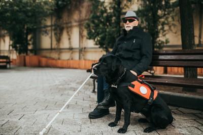 黒い盲導犬と男性