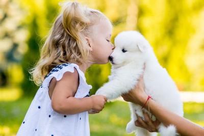白い子犬にキスする少女