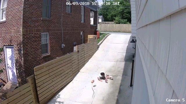 転ぶ男の子
