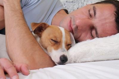 飼い主の腕にあごのせで寝る犬