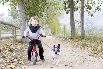 自転車に乗る子供と犬