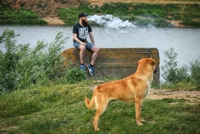 タバコを吸う人を遠巻きに見つめる犬