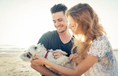 海で写真を撮る犬とカップル