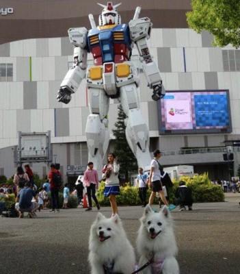 ガンダム像と犬