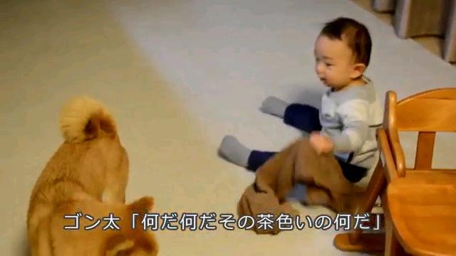 何だ何だ〜字幕