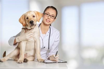 獣医の女性と診察台の上の犬