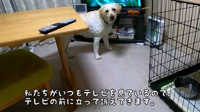 私たち~字幕