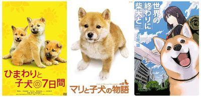 柴犬が出てくる映画・漫画