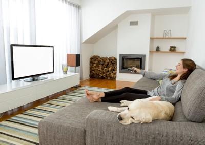 テレビを見る女性と犬