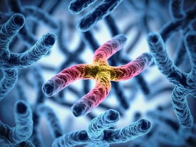 赤く光る染色体のグラフィック