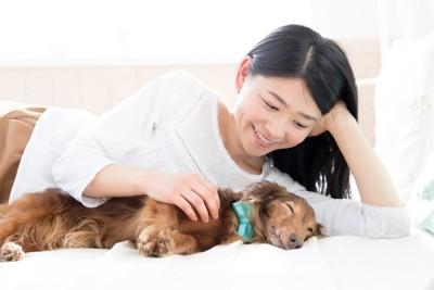 ダックスフントと添い寝をする女性