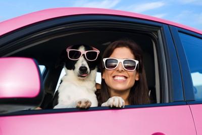 ピンクの車に乗りサングラスをかけた犬