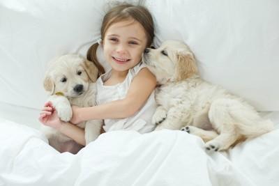 少女と子犬