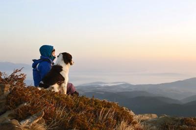 山に腰掛ける犬と人間