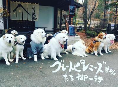 富士の茶屋 外観写真