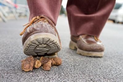 犬のウンチを踏みそうになっている人の足