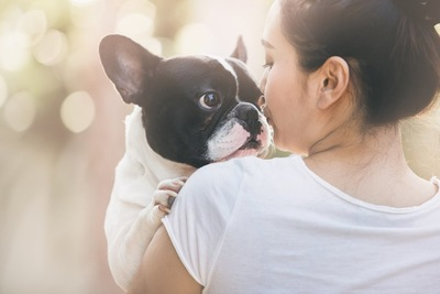 飼い主に抱っこされてキスされている犬