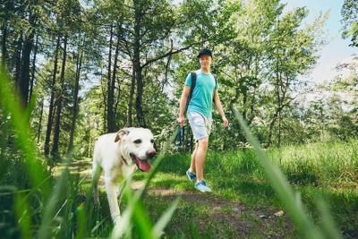 森の中を歩く犬と飼い主