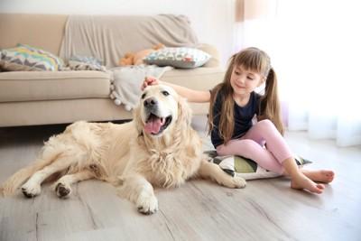 ゴールデンと子供の並ぶ写真