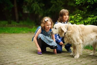散歩中の犬を触りたい子供たち