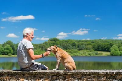 海のそばで犬と向き合うおじいさん