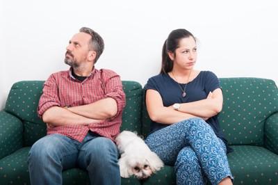 喧嘩している夫婦の間で伏せる犬