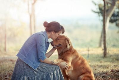 犬のおでこにキスする女性