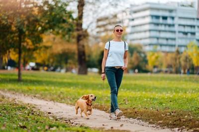 公園を散歩する女性と犬