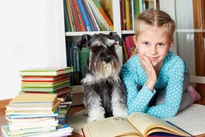 シュナウザーと本に囲まれた女の子
