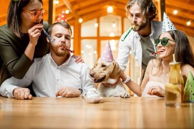 犬を囲んでパーティをする人