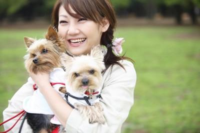 ペットシッターと犬