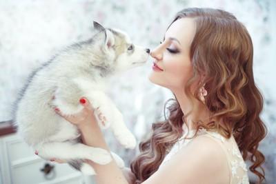 女性の口元に顔を近づけるハスキーの子犬