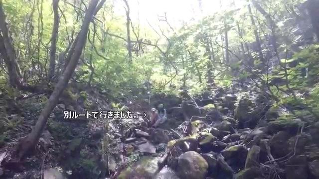 別ルート~字幕