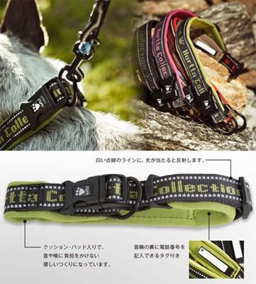 フルッタの首輪:首輪の説明と犬着用写真