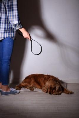 動物虐待イメージ