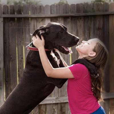 飼い主の肩にまたがる犬