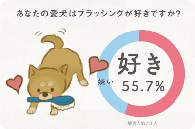 あなたの愛犬はブラッシングが好きですか?