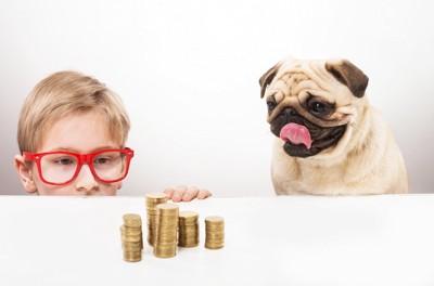積まれたコインを見つめる男の子と犬
