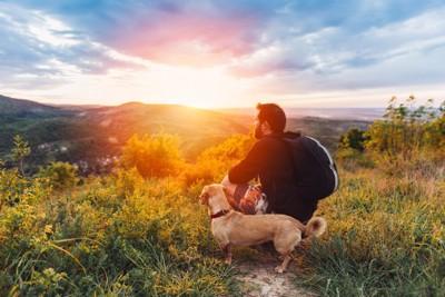 絶景を眺める犬と飼い主