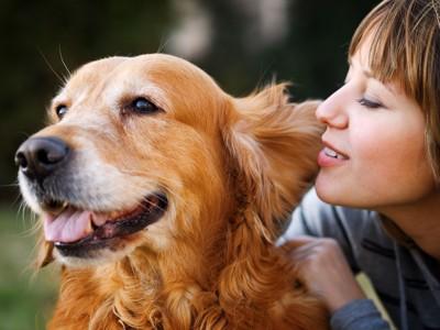 犬に話しかける女性