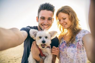 犬とカップル3
