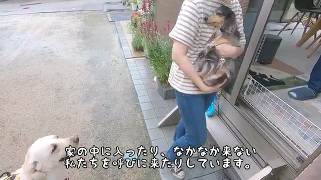 家の中に~字幕