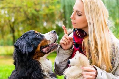 しつけ中の女性と犬