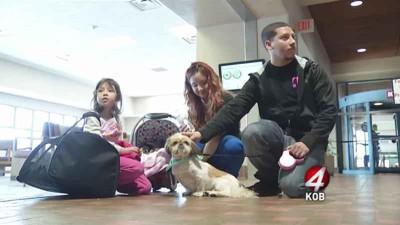 空港にいる犬と家族