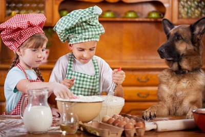料理をする2人の子供と犬