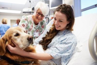 若い女性患者を訪問するセラピードッグ