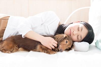 ベッドで添い寝する犬と女性