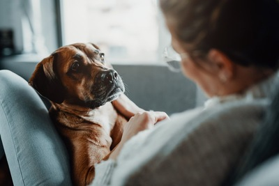 犬と一緒にくつろぐ女性