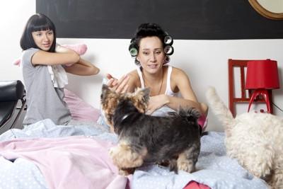 ベッドの上の女性と犬