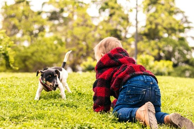 公園で遊ぶ子供の後ろ姿と犬